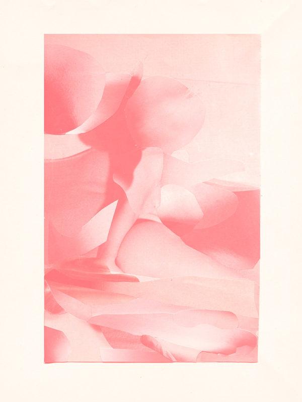 Print Pink Absorption