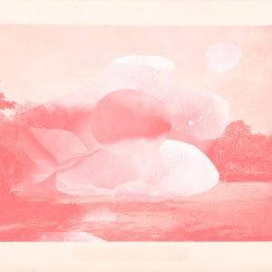 Print Pink Junction